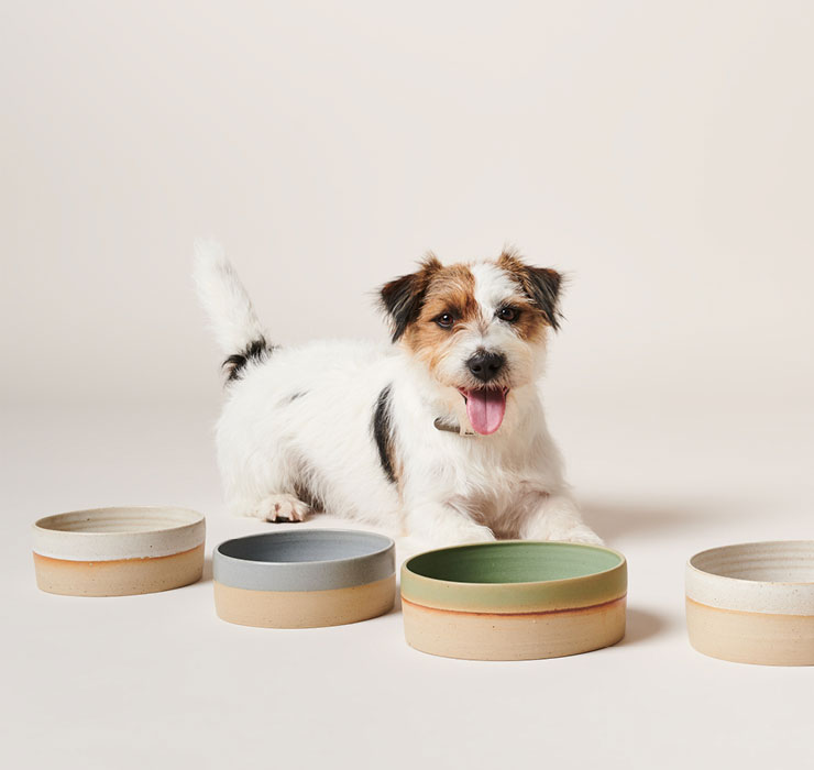 Afbeelding, Hond met Pawness Product Feeder Bowl
