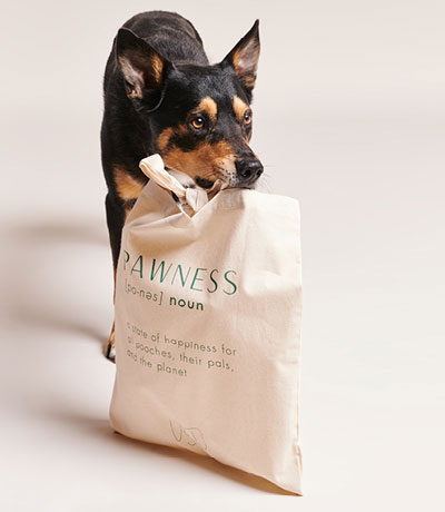 Image, Shop Pauwhond met boodschappentas - Pawness