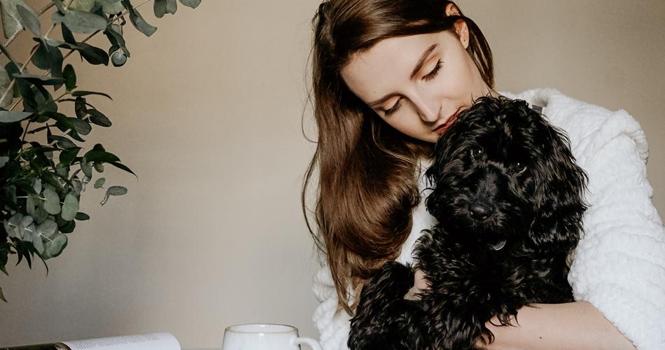 Puppy opvoeden: 10 tips manieren om de meest duurzame puppy ouder te zijn.