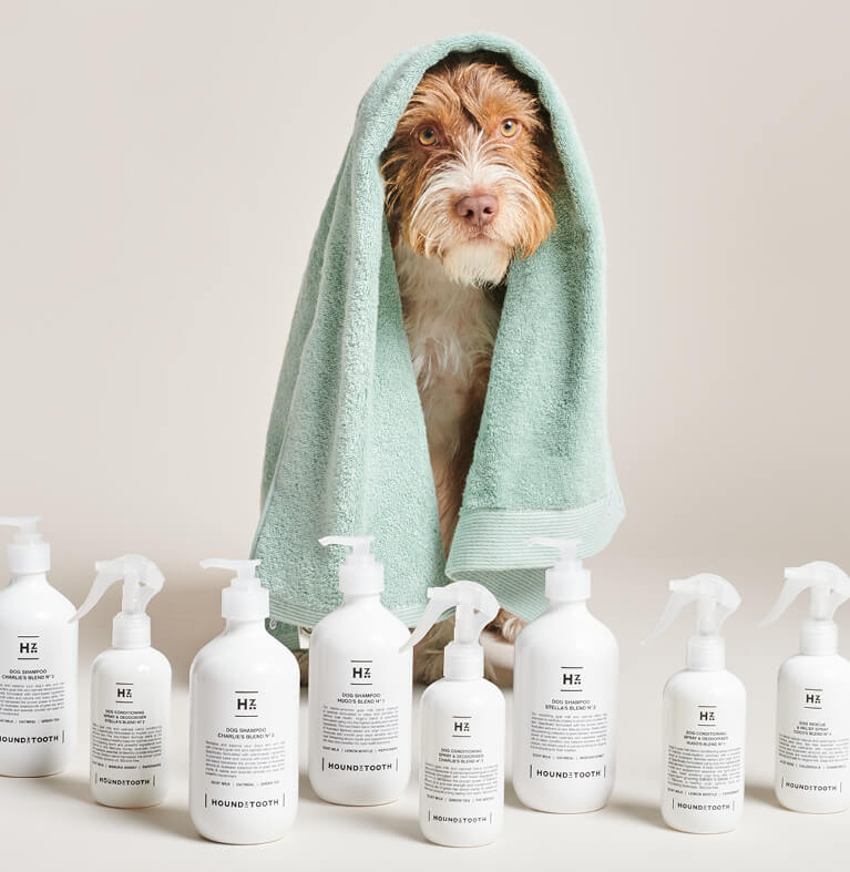Hond zittend achter vachtverzorgingsproducten van Houndztooth