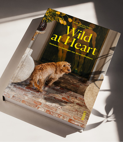 Boek Wild At Heart