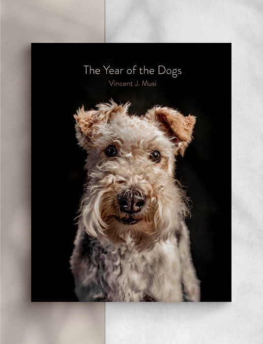 Boek The Year of the Dogs