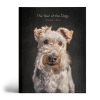 The year of the dogs boek